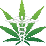Cannabis Healing, by Franjo Grotenhermen, M.D.